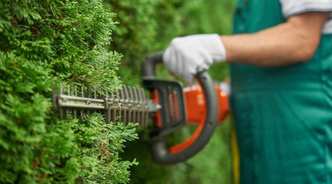 ryzyko zawodowe na stanowisku pracy ogrodnik